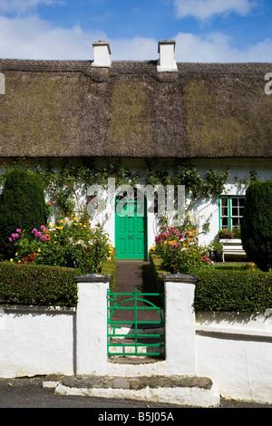 Traditional Cottage Garden and Doorway, Stradbally Village, County Waterford, Ireland