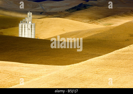 A grain elevator among hills of mature wheat ready for harvest afternoon in the Palouse region of Washington - Stock Photo