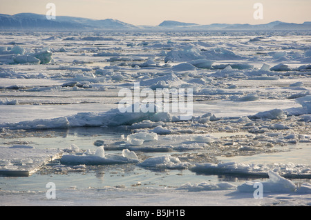 Pack-ice drifting in fjord - Stock Photo