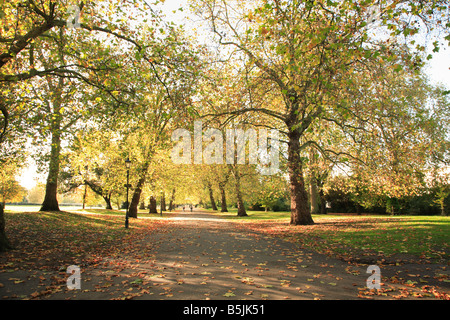 A view towards the bandstand in Battersea Park one October day - Stock Photo