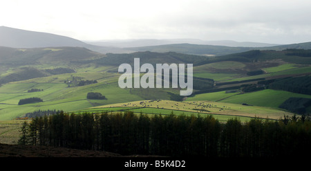 Forest and farmland as seen from the approach to Tap O North near Rhynie in Aberdeenshire - Stock Photo