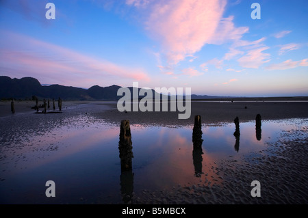 Old Jetty Piles at Sunrise Collingwood Golden Bay Nelson Region South Island New Zealand - Stock Photo