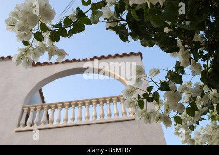 White hotel balcony with blooming flowers in front. - Stock Photo