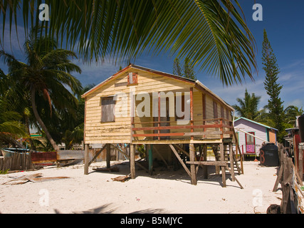 ... CAYE CAULKER BELIZE Wooden House On Stilts On Sand Beach With Palm  Trees   Stock Photo
