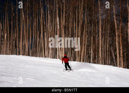 Mike Vining downhill skiing run near Painter Boy Lift Crested Butte Resort Colorado USA Downhill Skiing - Stock Photo