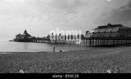 UNITED KINGDOM, ENGLAND, 28th April. 2008 A woman walks her dog on a deserted beach in Eastbourne. - Stock Photo