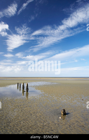 Old Jetty Piles Collingwood Golden Bay Nelson Region South Island New Zealand - Stock Photo