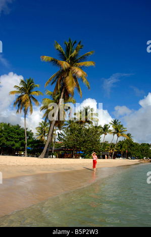 Woman on beach at Lance Aux Epines, Grenada in the 'West Indies' - Stock Photo