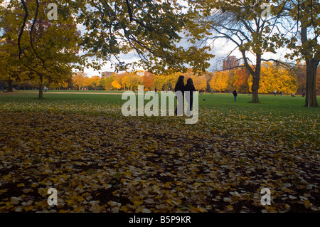 Visitors to the Great lawn in Central Park in New York view the fall foliage on Sunday November 9 2008 Richard B - Stock Photo