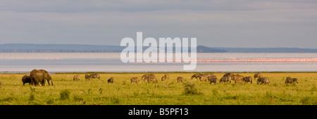 Panoramic view of Lake Manyara - Stock Photo