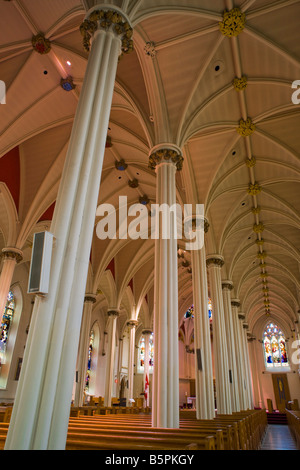 St Mary 39 S Basilica Halifax Nova Scotia Canada Stock Photo Royalty Free Image 126949789 Alamy