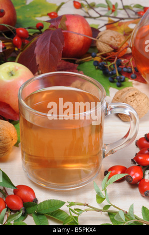 A cup of rose hip tea with fresh red briars and autumn decoration. - Stock Photo