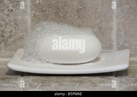 Bar of Soap with Suds on a Dish Against a Stone Tiled Wall - Stock Photo