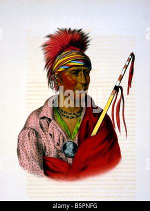 Native American Chief, Portrait 1890 - Stock Photo