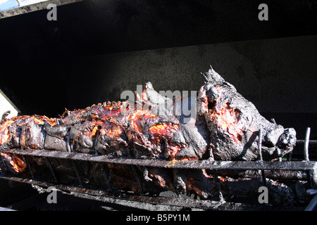 Dinner A completely cooked roasted pig on the spit still on the fire pit grill - Stock Photo