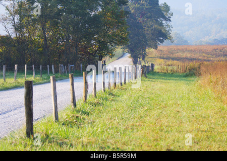 Large White tailed Buck with Antlers jumping a fence North America USA - Stock Photo