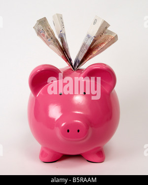 A pink piggy bank filled with pound sterling bank notes - Stock Photo
