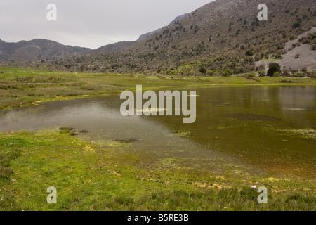 Temporary Pond on the Omalos plateau White Mountains Crete rare habitat EU protected - Stock Photo