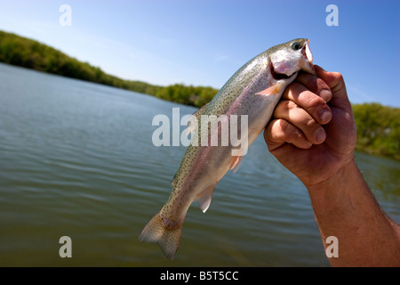 A man holds a rainbow trout caught at Lake Brittany in Bella Vista, Ark., U.S.A. - Stock Photo