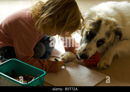 A young girl draws round the paw of a patient white and black dog with a crayon. - Stock Photo