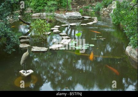 ... Texas Hill Country Austin Zilker Botanical Garden Taniguchi Japanese  Garden Koi Pond   Stock Photo