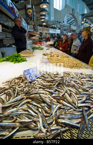 Fresh Anchovies or Boqueron for sale in the central fish market Mercado Central in the historical city centre of - Stock Photo