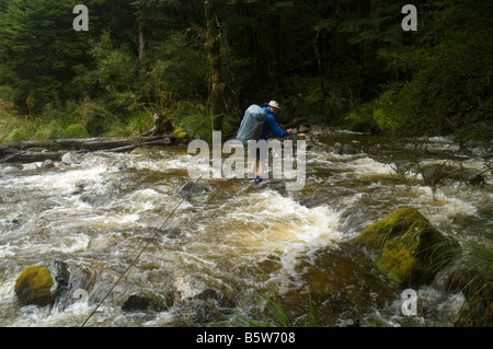 Using a single wire for safety while crossing a flooded stream, Wangapeka Track, South Island, New Zealand - Stock Photo