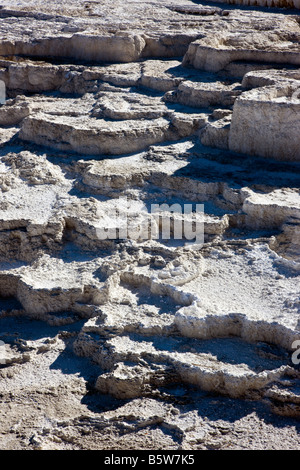 Close-up of formations at the Main Terrace, Mammoth Hot Springs, Yellowstone National Park; Wyoming; USA; - Stock Photo