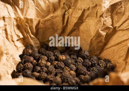 Black peppercorns in a paper - Stock Photo