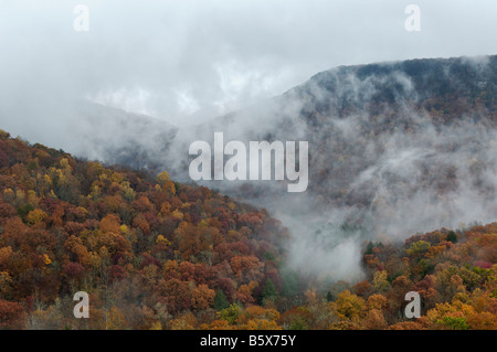 View from Buzzards Roost of Mist Rising and Autumn Color in Fall Creek Falls State Park Tennessee - Stock Photo