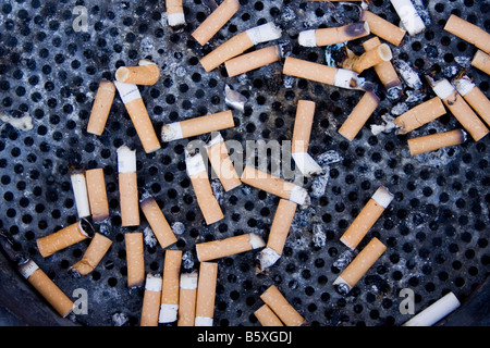 cigarette butts in a receptacle for stubbing out cigarettes on an amsterdam street - Stock Photo