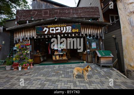 Ainu Village, Akan Kohan, Hokkaido, Japan, Asia - Stock Photo