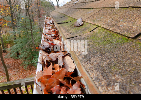 Roof gutters clogged up with fallen leaves. - Stock Photo