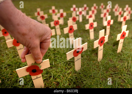 THE HAND OF A WAR VETERAN ARRANGING MINIATURE WOODEN CROSSES AT THE LAUNCH OF THE 2007 POPPY APPEAL AT WESTON SUPER - Stock Photo