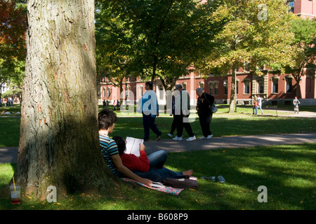 Two students studying on the lawn in the Harvard University yard - Stock Photo