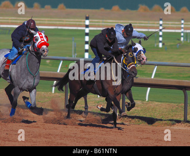 Horse racing at an American horse racing track - Stock Photo
