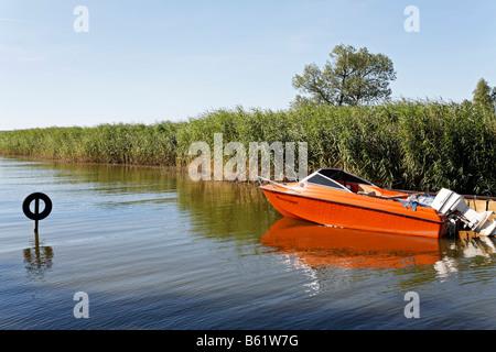 Idyllic boat harbour in the Achterwasser Bay near Warthe, Lieper Winkel, Usedom Island, Baltic Sea, Mecklenburg - Stock Photo
