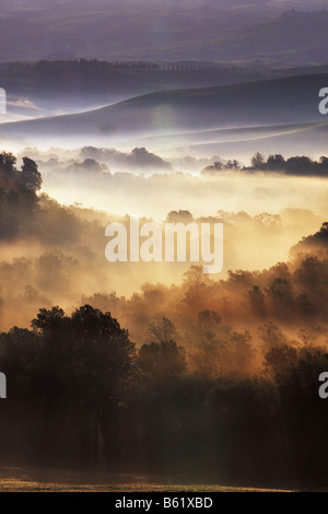 Early morning mist near Asciano, Tuscany, Italy, Europe - Stock Photo