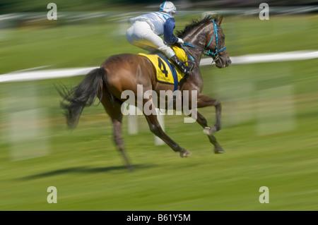 Jockey racing a horse, gallop race, racetrack in Munich Riem, Upper Bavaria, Bavaria, Germany, Europe - Stock Photo