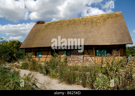 Historic wattle and daub half-timbered one family house with thatched roof 1561, eco-museum, Ungersheim, Alsace, - Stock Photo