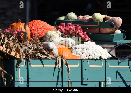 Fall Decorations in a wooden wagon full of gourds pumpkins corn stalks and flowers Branson Missouri - Stock Photo