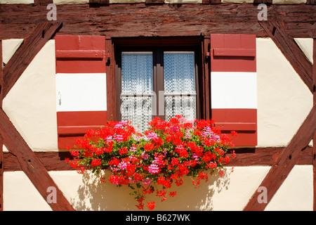 Window, shutter, geraniums, Nuremberg Castle or Kaiserburg, fore-court, half-timbered, Nuremberg, Middle Franconia, - Stock Photo