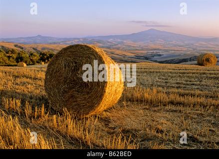 Bale of straw, harvested wheatfields, landscape around Radicofani and Monte Amiata at sunset, Val d' Orcia near - Stock Photo