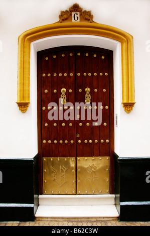 Old door of a mansion, Seville, Andalusia, Spain, Europe - Stock Photo