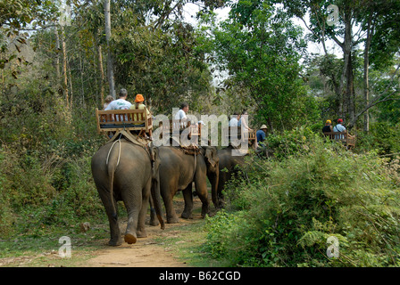 Tourist on an elephant trek through the jungle near Luang Prabang, Laos, Southeast Asia - Stock Photo