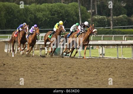 Horse race at Santa Anita Racetrack in Arcadia, CA. - Stock Photo