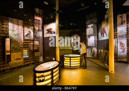 Finland, Kuhmo, Petola Visitor Center. Information about Finland's largest carnivores and preditors, like bear, - Stock Photo