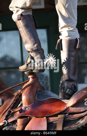 A cowboy standing on top of his saddle on his horse - Stock Photo