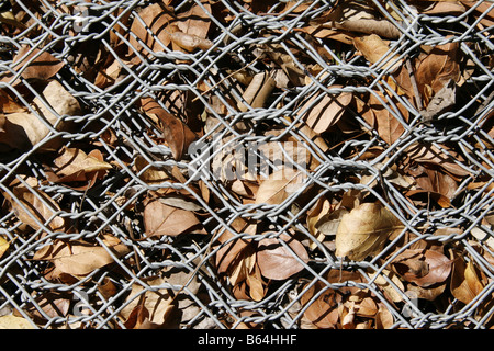 fallen brown leaves stuck in metal wire fence on ground floor ...