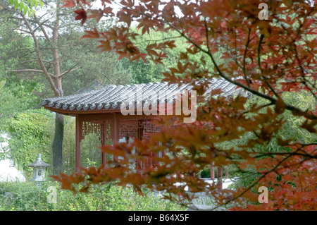 Gardens of the World - Chinese Garden - Berlin - Stock Photo